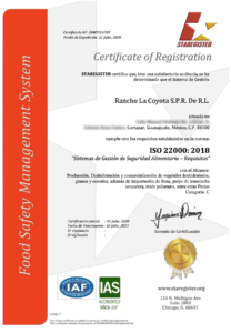 Certificado 22000 Español
