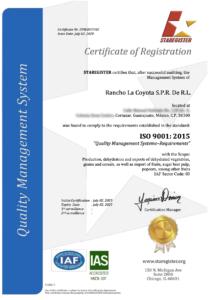 Certificado 9001 Inglés